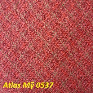 Thảm trải sàn Mỹ- TM-2